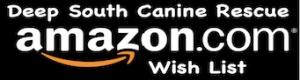 DSCR AMAZON LOGO WEBSITE